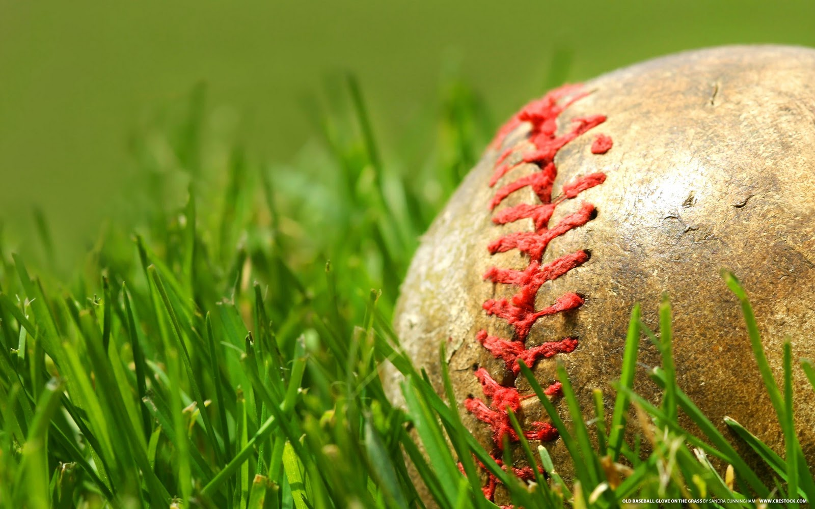 The-best-top-desktop-baseball-wallpapers-16-ball-in-the-grass-wallpaper
